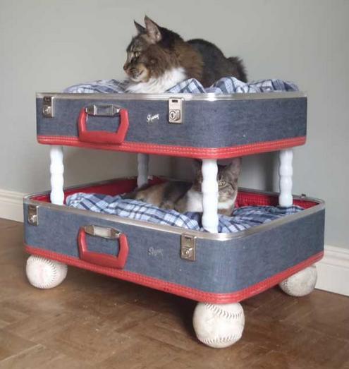 Como hacer cama casita gimnasios para gato construir - Casa de gatos con palets ...
