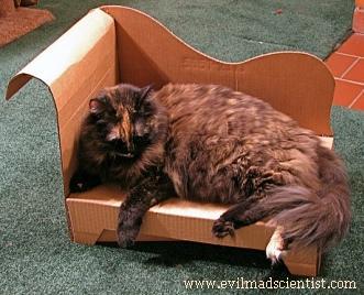 Como hacer cama casera para gato picture to pin on - Como hacer cabezales de cama ...
