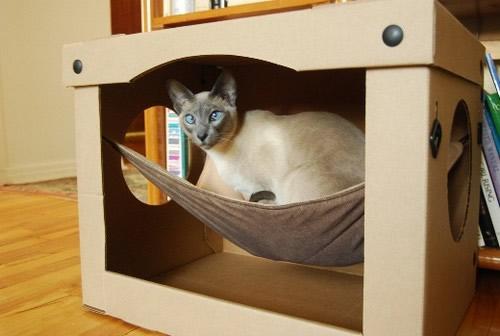 Como hacer cama casita gimnasios para gato construir - Casas para gatos baratas ...